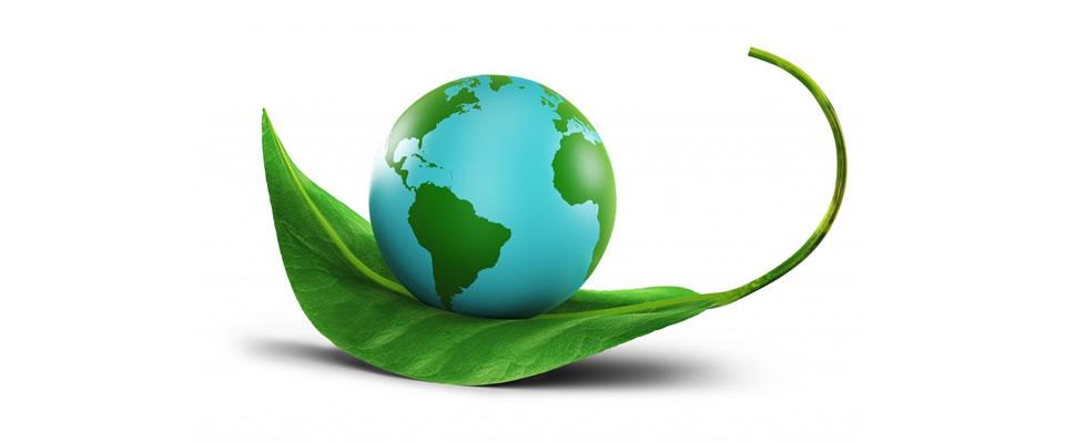 serkan uygur yeşil dünya